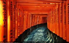 fushimi-inari-taishka-kyoto-ajoure-travel