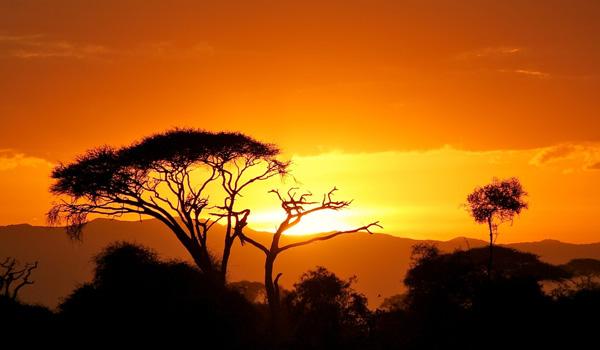 Sonnenaufgang-Savanne-Kenia-ajoure-travel