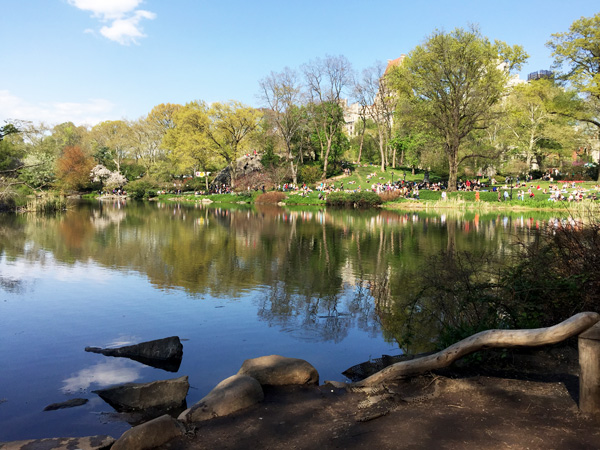 Central-Park-See-Ajoure-Travel