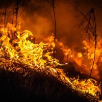 Waldbrände Alaska Karte.Alaska Im Kampf Gegen Waldbrände Ajoure Travel