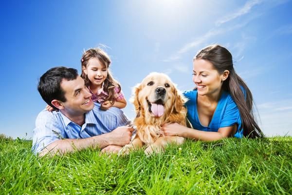 Hund-Familie-ajoure-travel