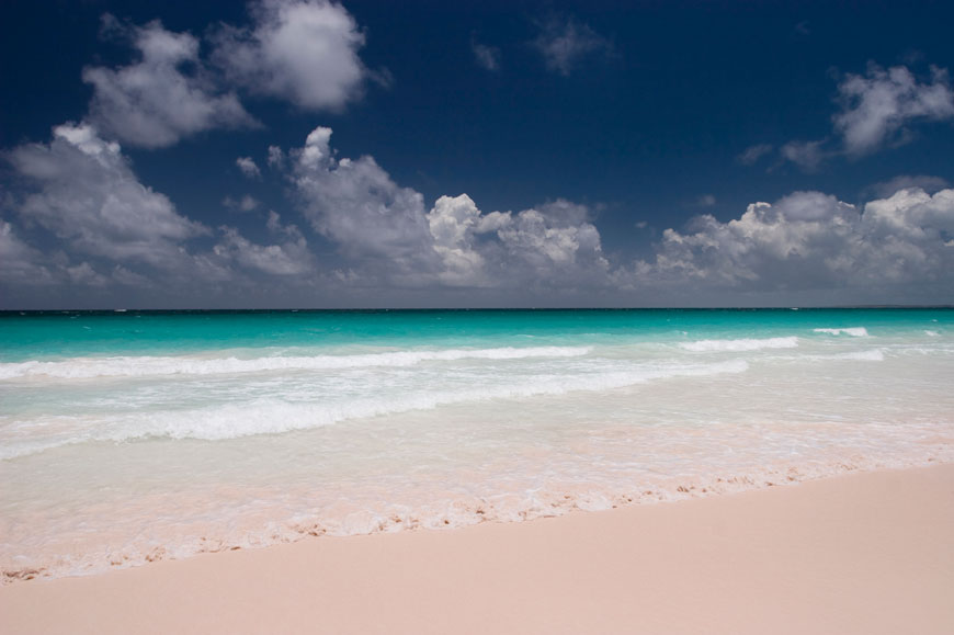 PINK: Pink Sands, Harbour Island, Bahamas