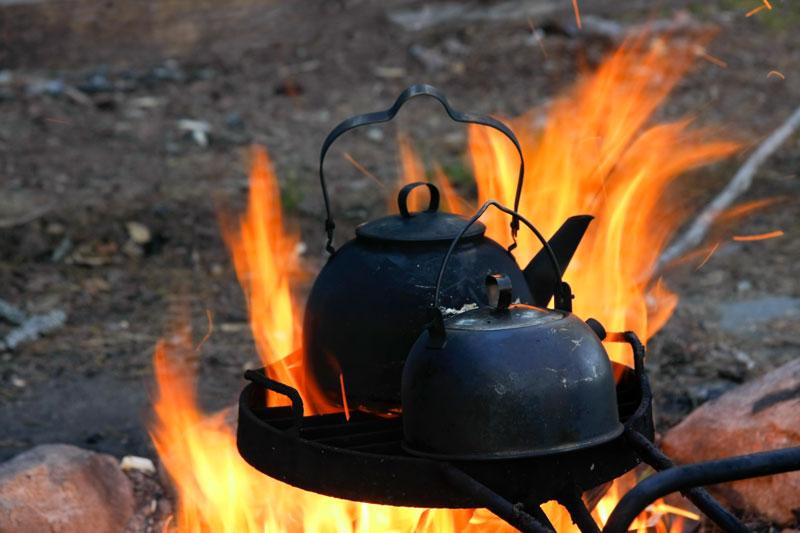 Wild-Food-Cooking