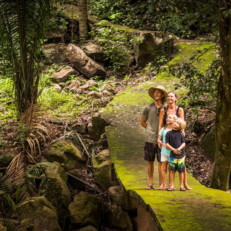 Dschungel-Trip in Thailand