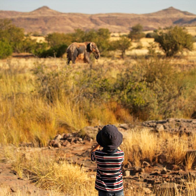 Auf Safari-Tour in Namibia