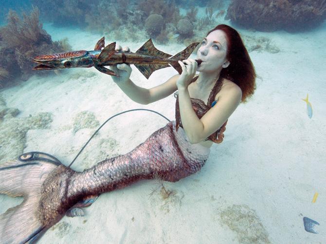 Meerjungfrau beim Underwater Music Festival Florida