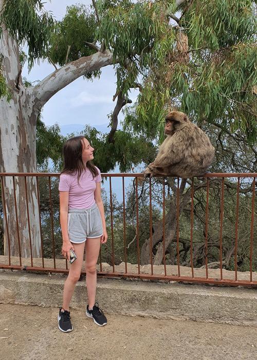 Gibraltar Felsen Affen