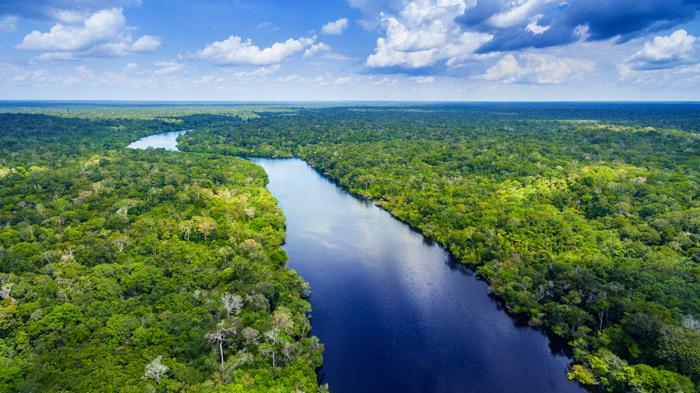 Die längsten Flüsse der Welt: Amazonas